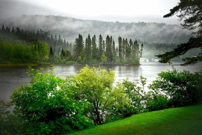landscape, summer, nature