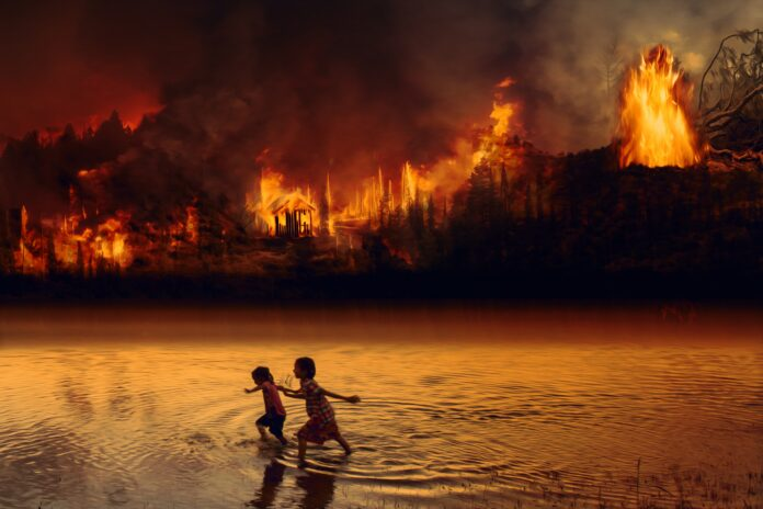 fire, forest fire, children