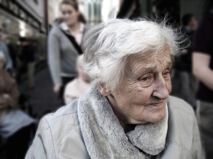 woman, senior, portrait