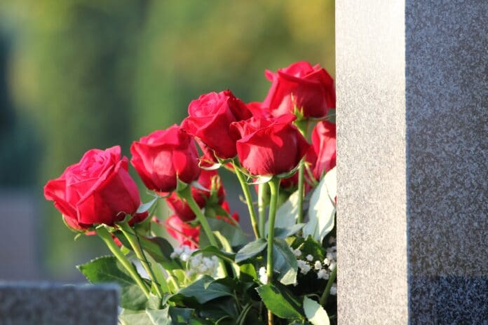 red roses bouquet, condolence, remembering